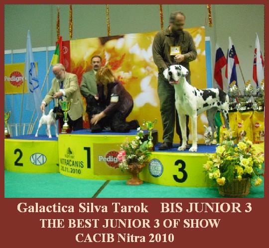 galactica-bis-junior-3-nitra-2010-5an.jpg