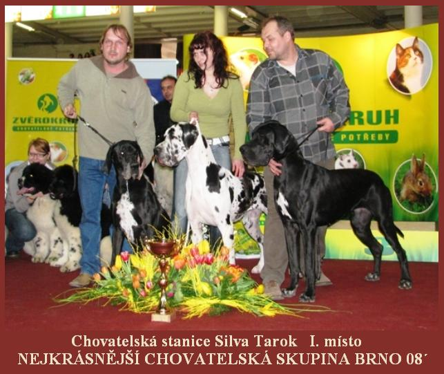 skupina-brno-cz-10-02-08.jpg